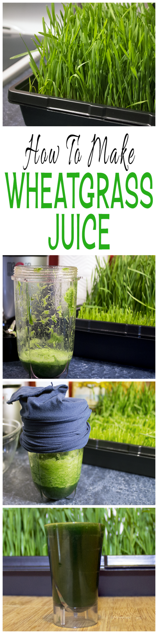 Best Wheatgrass Juice Recipe