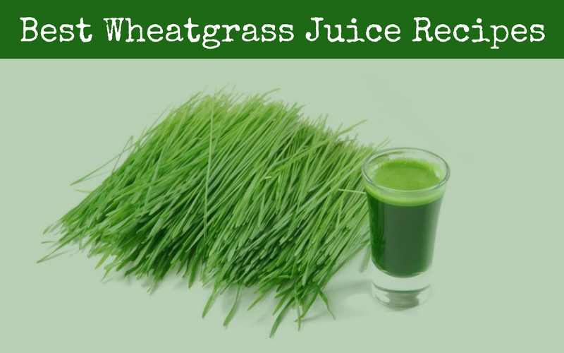 Best Wheatgrass Juice Recipes of 2019