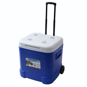 Igloo Ice Cube Roller Cooler Review