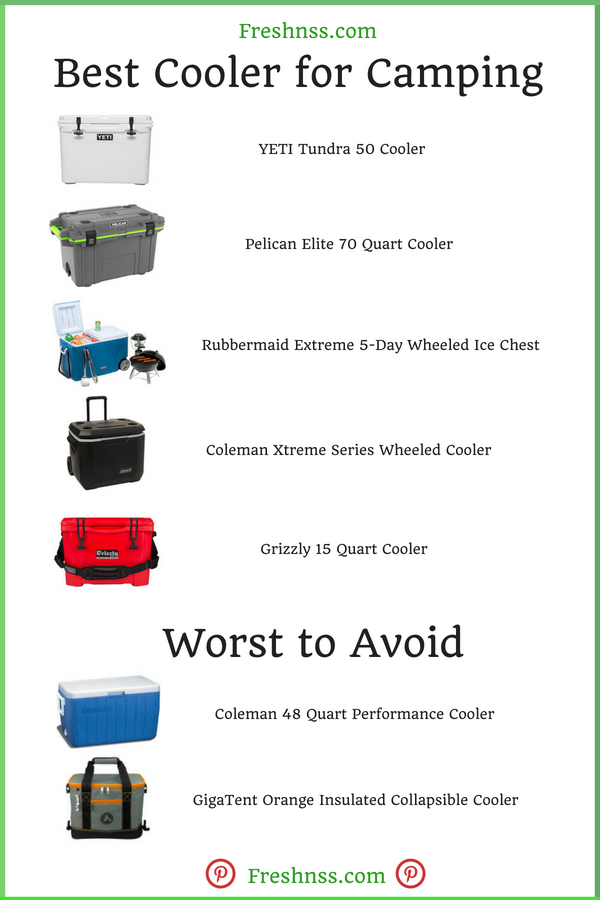 Best Cooler for Camping Reviews
