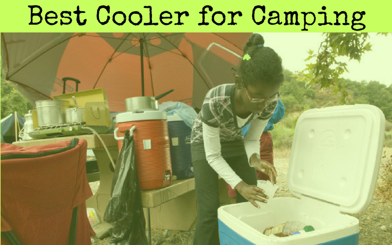 Best Cooler for Camping of 2019