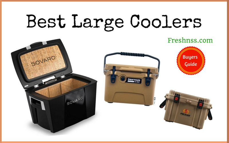 Best Large Coolers (2020 Buyers Guide)