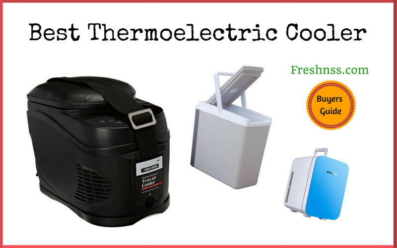 Best Thermoelectric Cooler Review (2020 Buyers Guide)