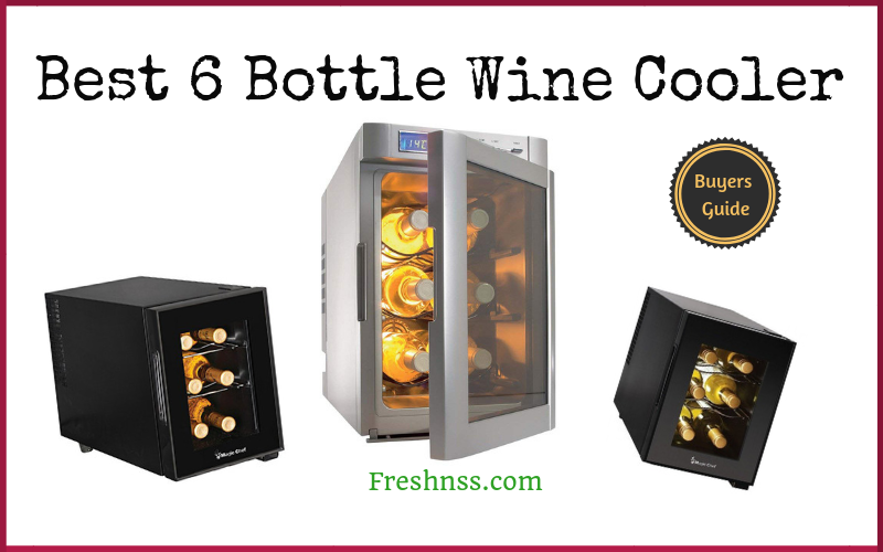 Best 6 Bottle Wine Cooler Reviews of 2019