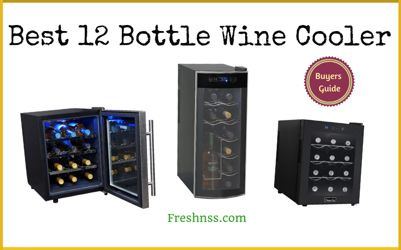 Best 12 Bottle Wine Cooler Reviews (2020 Buyers Guide)