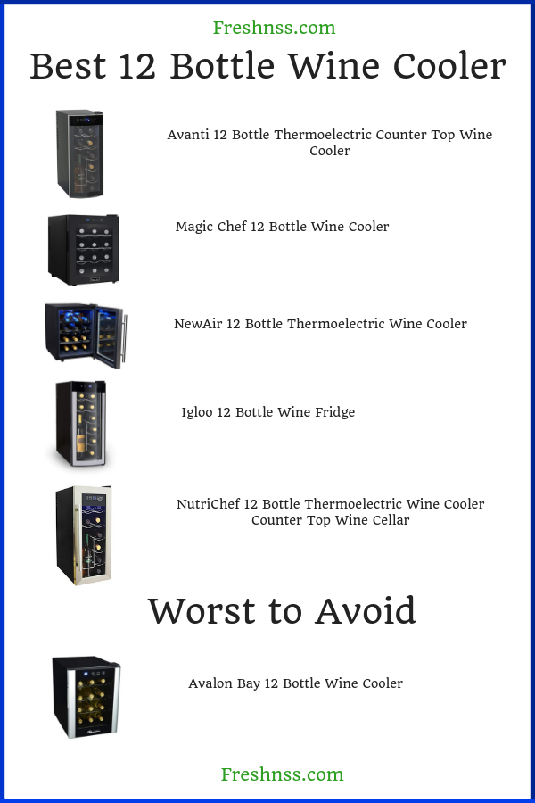 Best 12 Wine Bottle Cooler