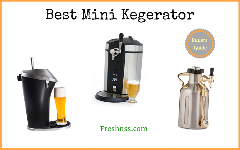 Best Mini Kegerator Reviews (2020 Buyers Guide)
