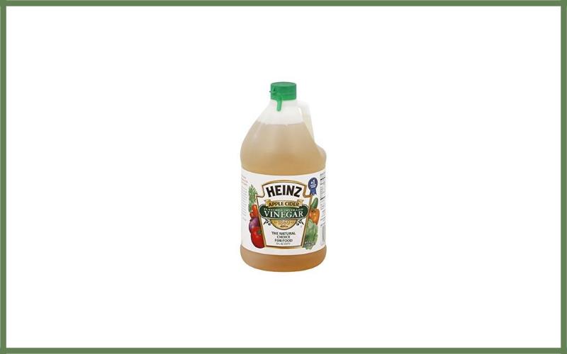 Heinz Apple Cider Flavored Vinegar Review