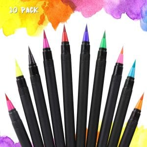 Nomeca Flexible Brush Tip Food Coloring Markers Set of 10 Review