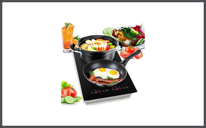 Dual 120v Electric Induction Cooker Review