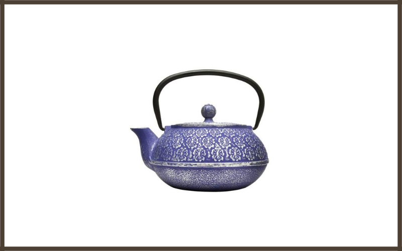 Blue Floral Cast Iron Teapot By Primula Review