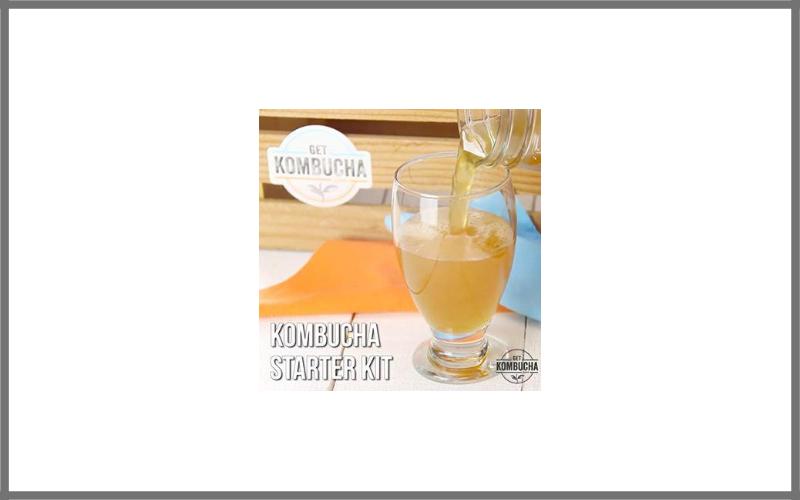 "Kombucha Brewing Starter Kit 6.5"" Organic Scoby Review"