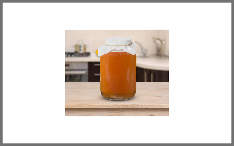 Kombucha Scoby With Starter Tea And 1 Gallon Kombucha Jar By Kitchentoolz Review