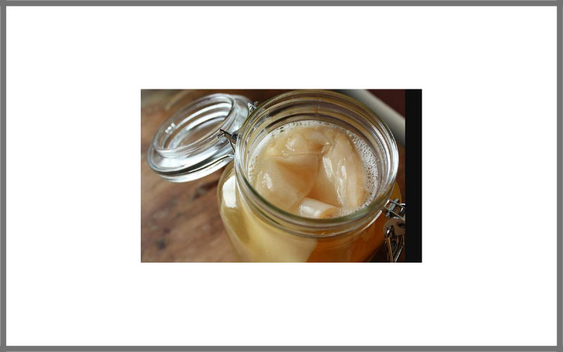 Organic Kombucha Scoby Live Culture By Scoby Kombucha Review