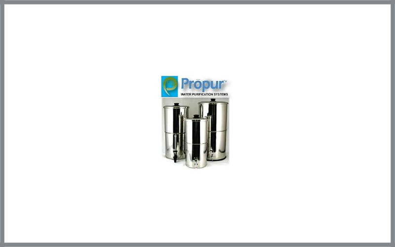 Propur Traveler Stainless Steel Water Purification With 1 Proone 5 Inch Hi Performance Filter Element For Chemical And Fluoride Removal Review