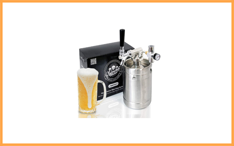 Pressurized Beer Mini Keg System Review